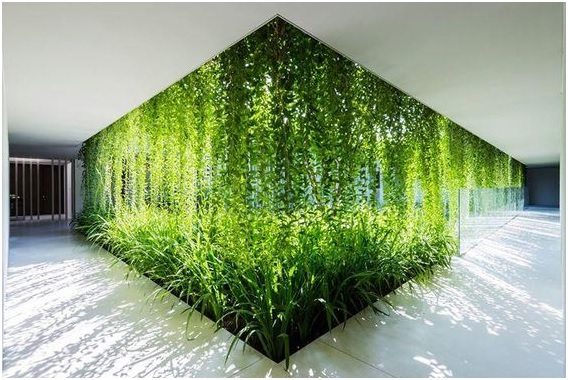 An image to depict the inclusion of green features in hotel interior designing - Shruti Sodhi Interior Designs