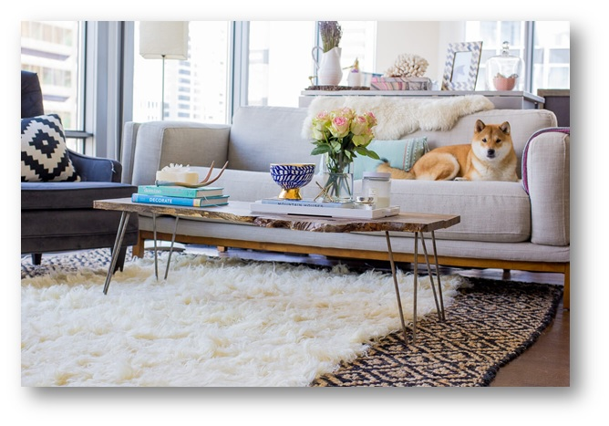 A living room with Fur Rugs - SSID