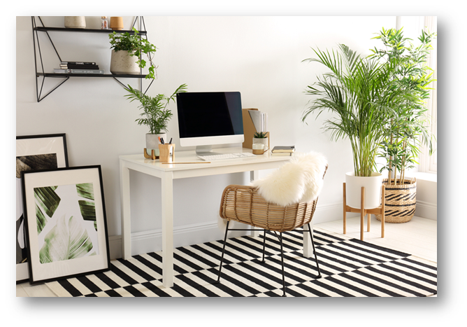 Adding greenery to home interiors - SSID