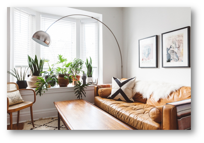 Home interiors with indoor plants - SSID