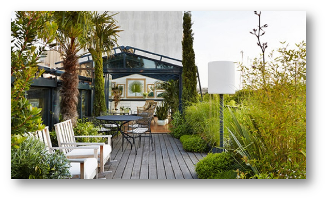 A small terrace full with natural plants - SSID